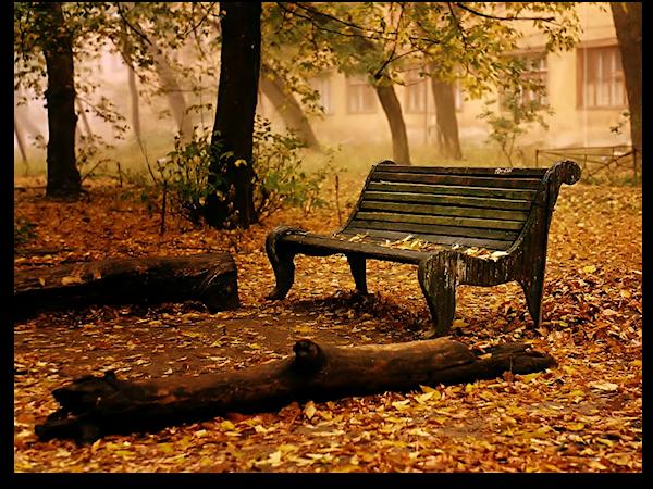 Banc - automne