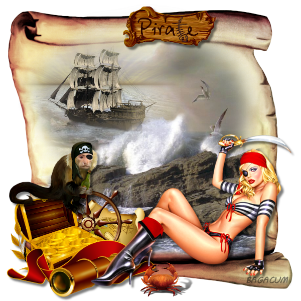 http://lunaswitchescloset.blogspot.com/2012/09/pirate-room-this-rm-is-off-hook-sail.html