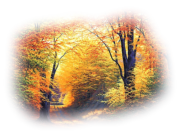 Extase - automne